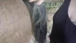 Фигуристая женщина облизывает лошадке лохань и дрочит руками интимное зоопорно взрослое