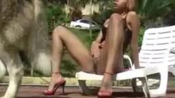 Миленькая бразильянка занимается любовью с тузиком на уличке порнозоо видеофильм частный